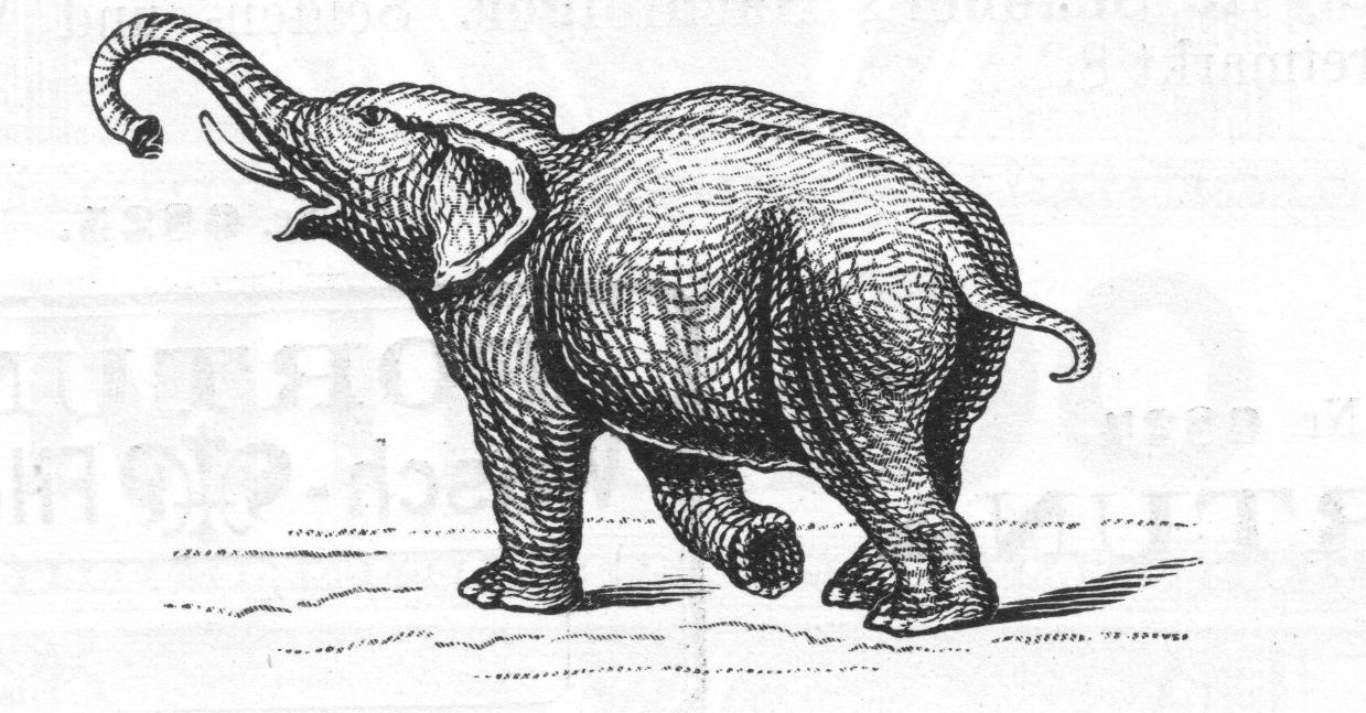 Obrazová ochranná známka společnosti L. & C. Hardtmuth svyobrazením slona patří knejstarším ochranným známkám světa.